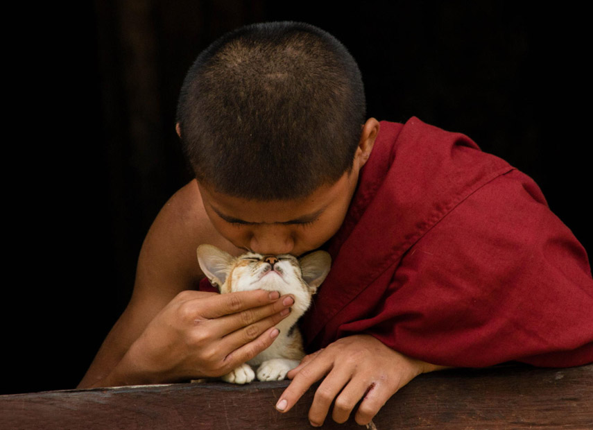 Een jonge monnik samen met zijn kat in Myanmar © Handan Birel