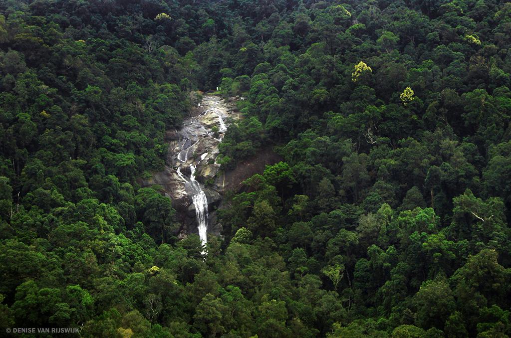 Fotograferen in de tropen